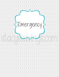 emergency-cover-mini