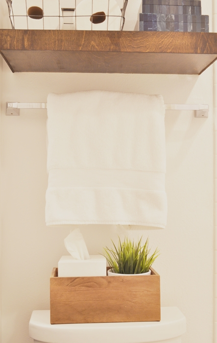 DIY Jack & Jill Bathroom Remodel on a budget